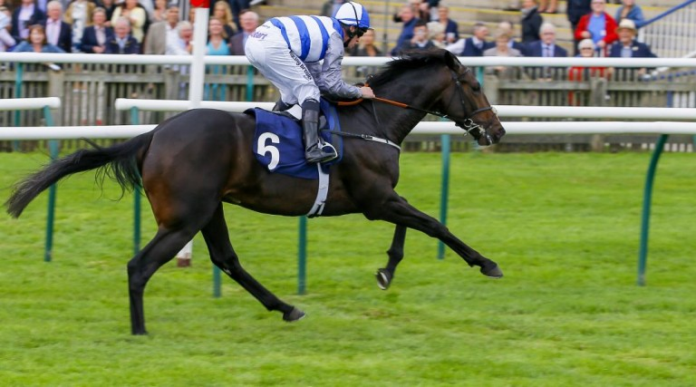 Eminent - Craven Stakes odds