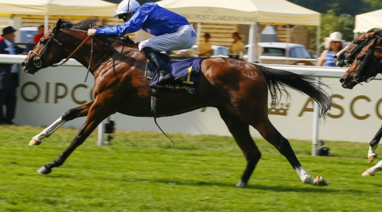 Coral-Eclipse odds