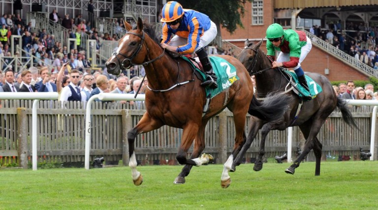 Newmarket odds, Cheverley Park Stake odds, Cambridgeshire odds