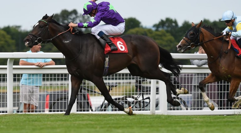 Mojito odds, Newmarket odds, Ascot Challenge Cup odds, Newmarket odds