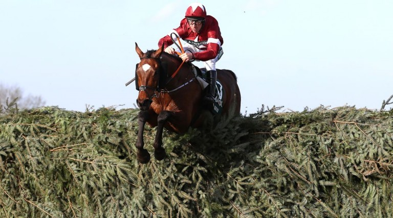 Tiger Roll wins Grand National