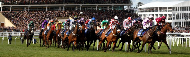 Cheltenham Gold Cup Trends Guide